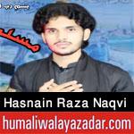 https://www.humaliwalayazadar.com/2020/08/syed-hasnain-raza-naqvi-nohay-2021.html