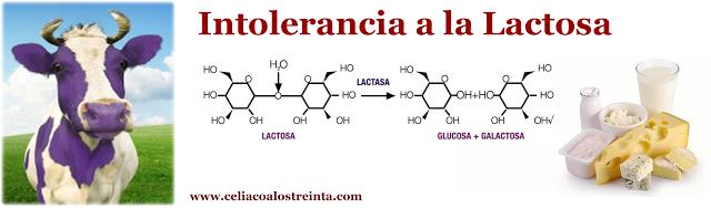como saber si soy celiaco o intolerancia ala lactosa