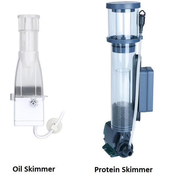 Pros and Cons of Aquarium Oil / Protein Skimmers