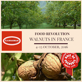 EK E+ YE FR Walnuts in France