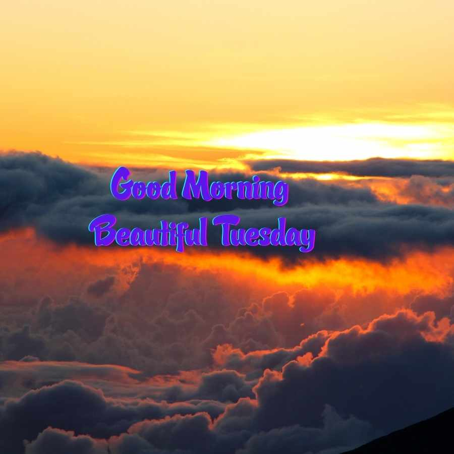tuesday wishes images