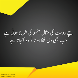 sad quotes in urdu about friendship