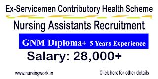 Nursing Assistant Jobs -ECHS