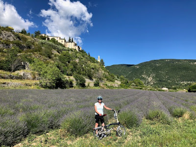 French Village Diaries book review Lavender, Loss and Love at the Villa des Violettes Patricia Sands