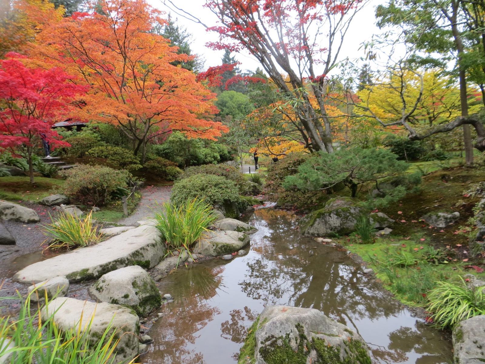 Seattle Japanese Garden Community Blog: 2016