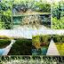 Fungsi dan Manfaat Penting Adanya Hutan Mangrove Pada Kawasan Pesisir