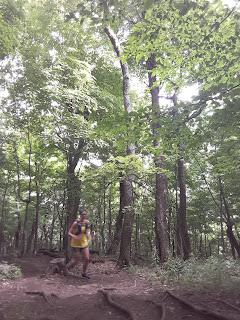 Coureuse, trail, forêt, mont Saint-Hilaire