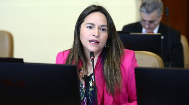 Diputada Joanna Pérez