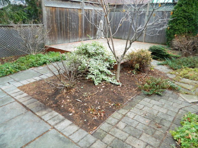 Oakwood Vaughan Toronto Backyard Fall Cleanup After by Paul Jung Gardening Services--a Toronto Gardening Company
