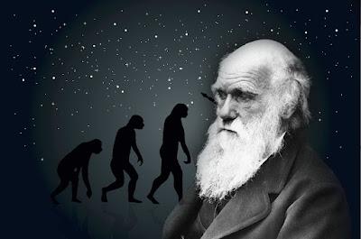 Evoluciones y adecuaciones Darwin