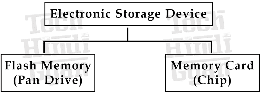 Electronic Storage Device