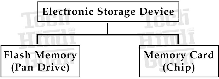 Electronic Storage Device