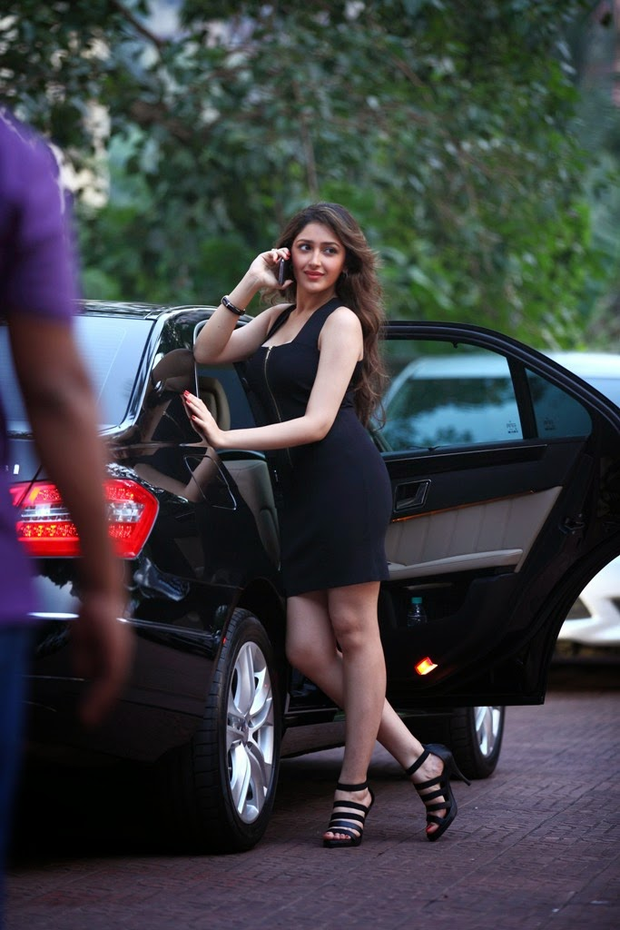 Sayesha Saigal hot sexy images HD wallpaper