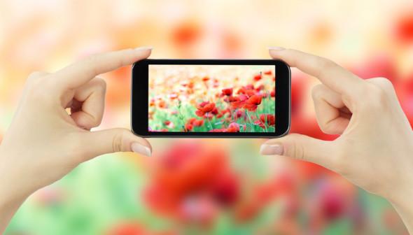 Tips Dan trik fotografi menggunakan smartphone agar hasil seperti fotografer