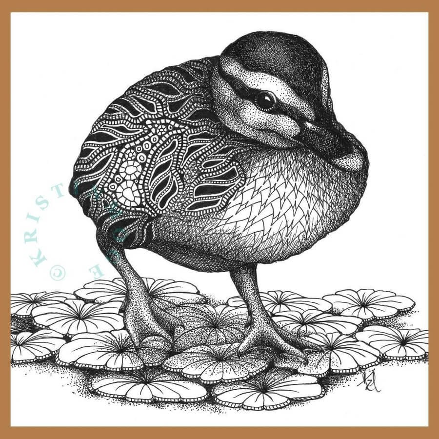 01-Duckling-Kristin-Moger-www-designstack-co