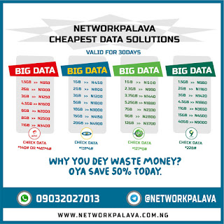 networkpalava cheap data plans 1GB for n400