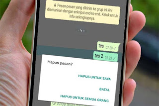 pesan whatsapp dihapus