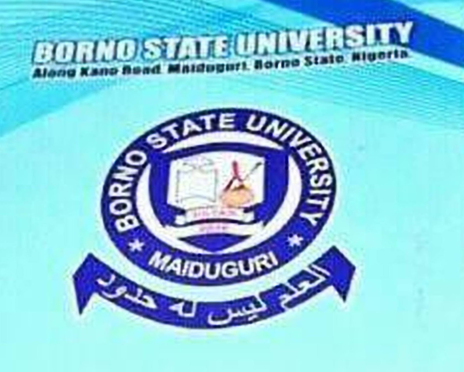 Image result for Borno State University
