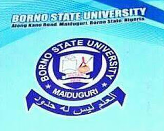 Borno State University Maiduguri Gets 1st Vice Chancellor & Staffs