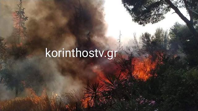 Πυρκαγιά κοντά στα Ίσθμια Κορινθίας - Έκλεισε η Π.Ε.Ο Ισθμού – Επιδαύρου
