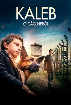 Kaleb: O Cão Herói
