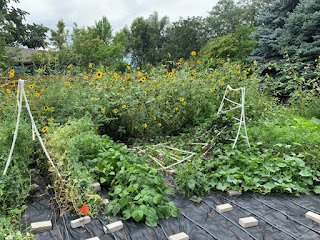 Trellis completely knocked over with another partially collapsed