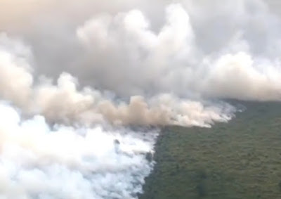 Kebakaran Hutan dan Lahan di Provinsi Riau Dalam Jepretan Kamera