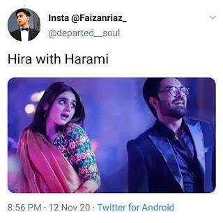 Hira Mani Memes