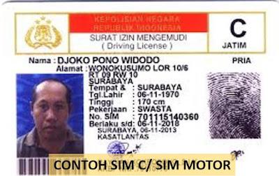 contoh surat izin mengemudi motor