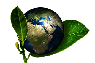 world environment day theme 2019  world environment day presentation  world environment day essay  world environment day 2019 theme and slogan  world environment day speech  world environment day 2018 theme  world environment day 2020 theme  world environment day logo