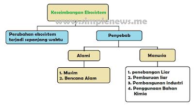 peta pikiran keseimbangan ekosistem www.simplenews.me