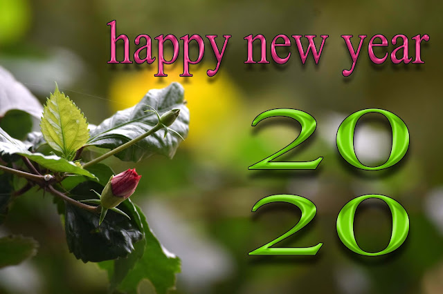 happy new year 2020 love shayari photo