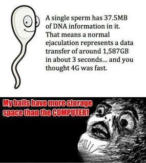 jumlah sperma 16 Fakta Aneh Tubuh Manusia Terbaru