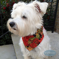 Christmas Dog Bandanas and Scrunchie Ruffles