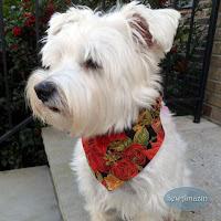 Christmas Dog Bandanas and Scrunchie Ruffles