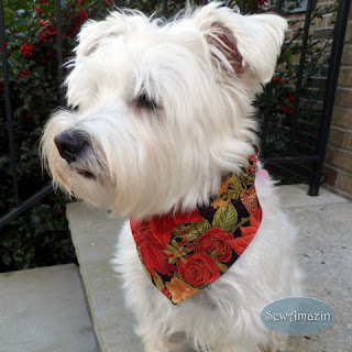 Christmas Dog Bandana, Red Poinsettia, Roses