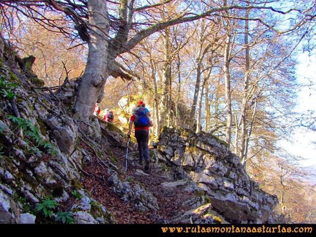 Ruta al Campigüeños y Carasca: Caminando por el bosque Porupintu