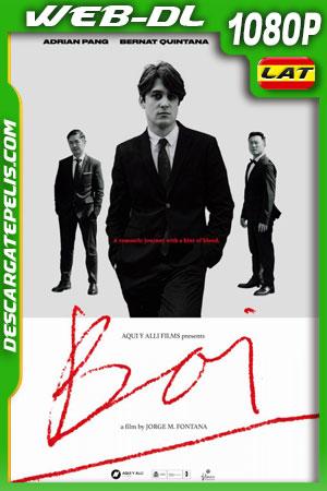 Boi (2019) WEB-DL 1080p Castellano – Ingles