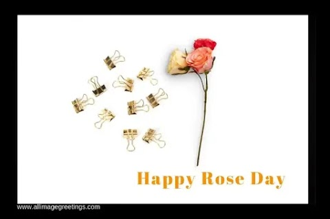 Happy Rose Day 2021  celebration of love Quotes and Images, Wishes, Status, SMS, Messages