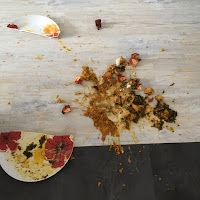 curry splattered on the floor with a broken white and red dinner plate.