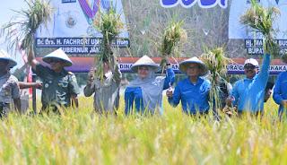 Fachrori : Pemerintah Bersinergi Memacu Peningkatan Produksi Pangan