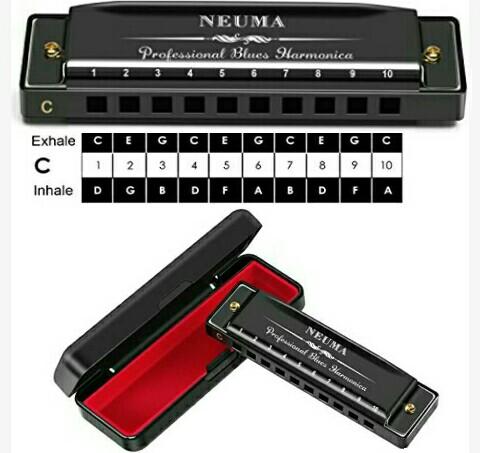 Neuma Mouth Organ: KeyC Harmonica with Ten Holes - Musical Instruments