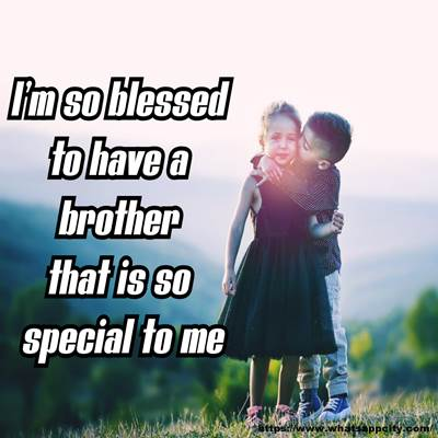 50 Siblings Quotes For Whatsapp Brother Sister Love