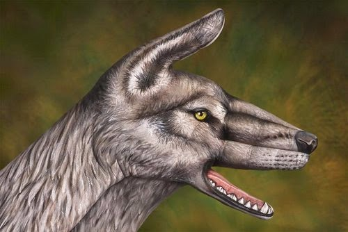 18-Wolf-Guido-Daniele-Painting-Animals-on-Hands-www-designstack-co