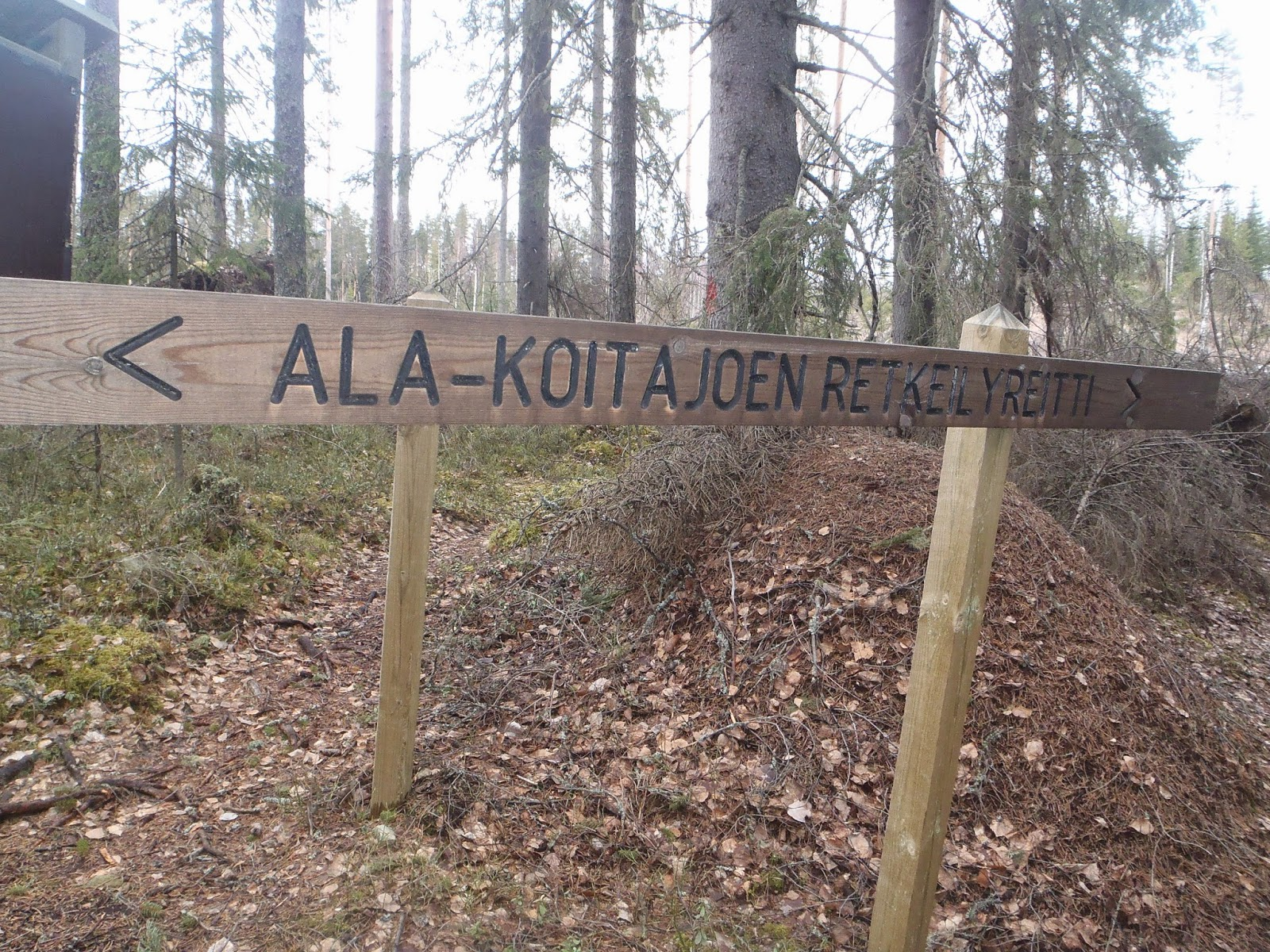 Kebnekaisun Retkitarinoita Ala Koitajoella