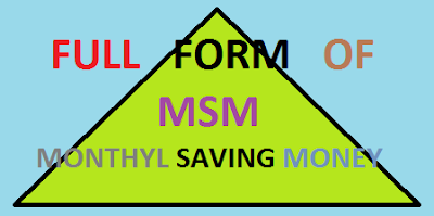 Top 10 Commonly Used MSM Full Forms