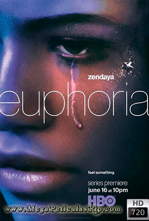 Euphoria Temporada 1 [720p] [Latino-Ingles] [MEGA]