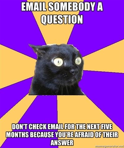 anxiety cat email