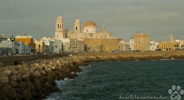 Vistas a la Catedral de Cádiz