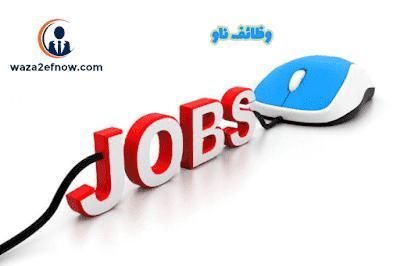 مطلوب محاسبين للعمل في مصر خبرة وحديثي التخرج - وظائف ناو
